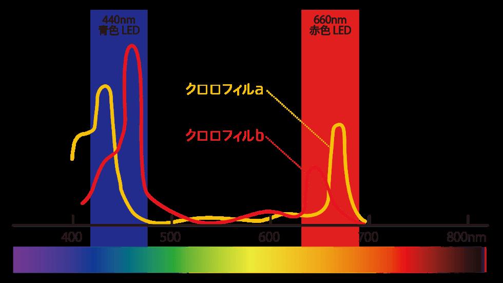 光合成の波長